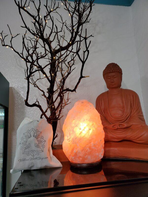 Himalayan Salt Lamp LRG A